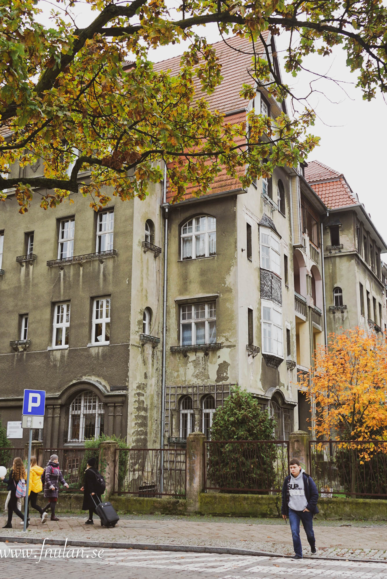 Szczecin staden-8
