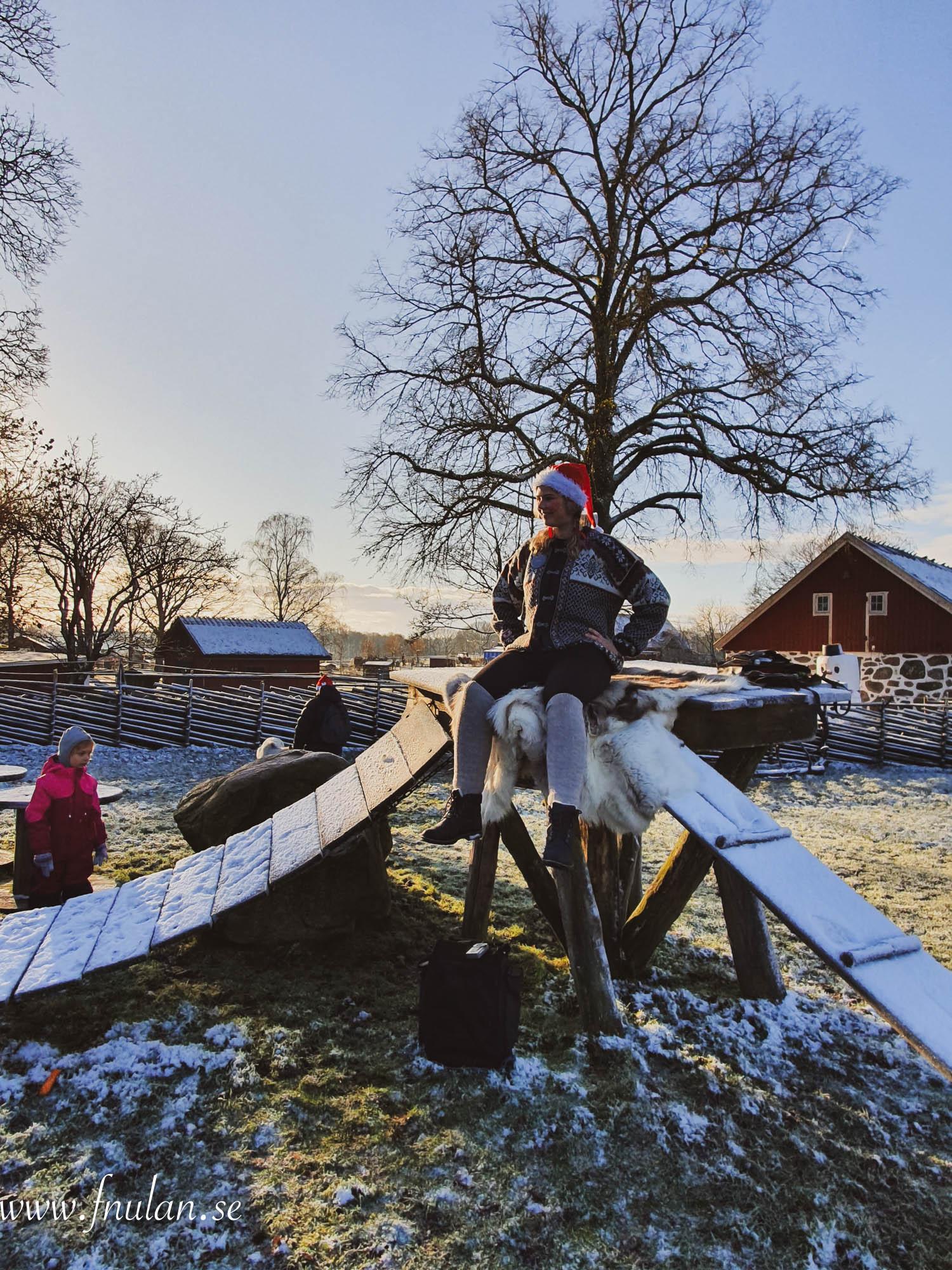 Skånes Djurpark_-4