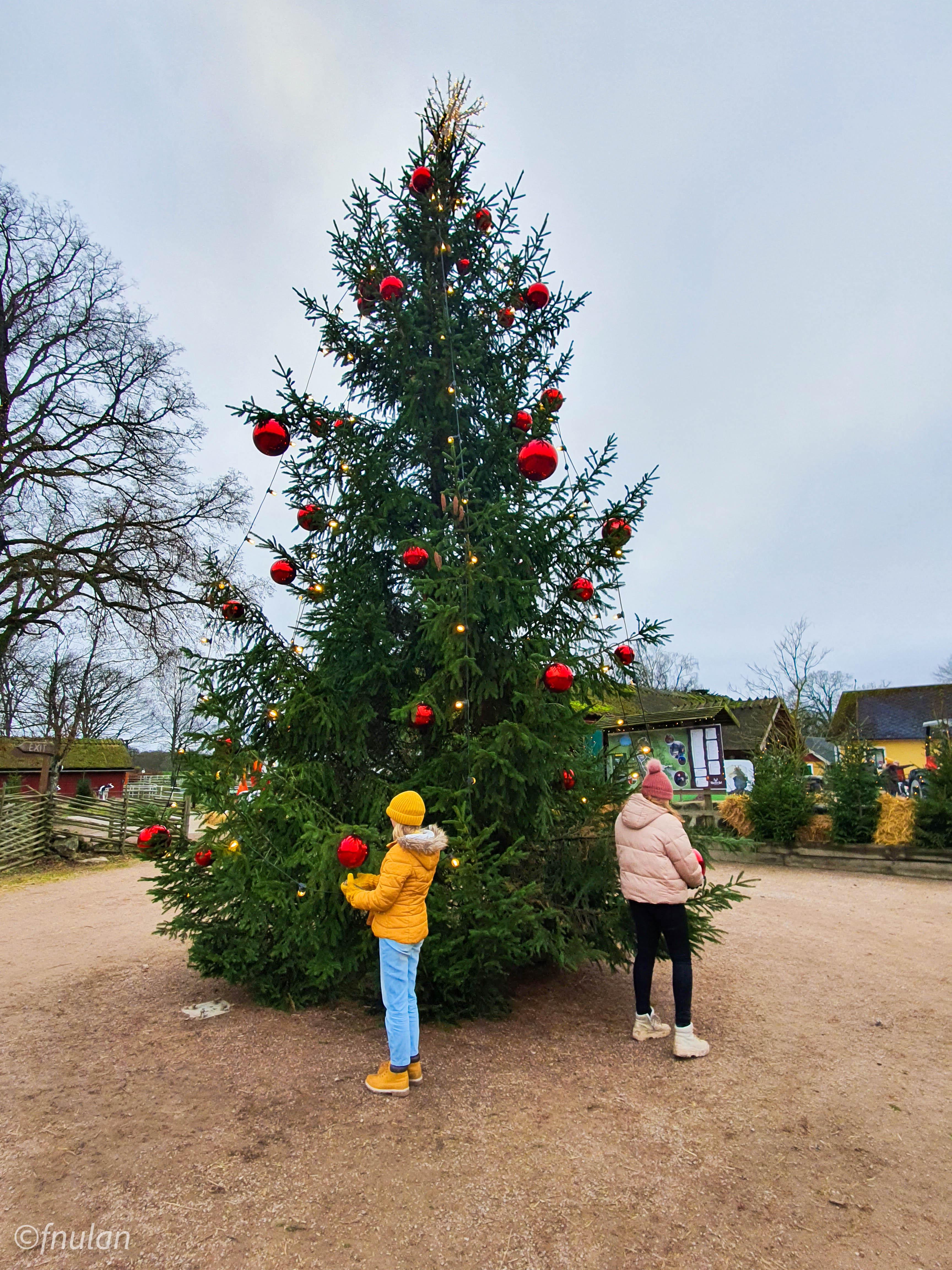 Jul i Skånes djurpark 2020-13