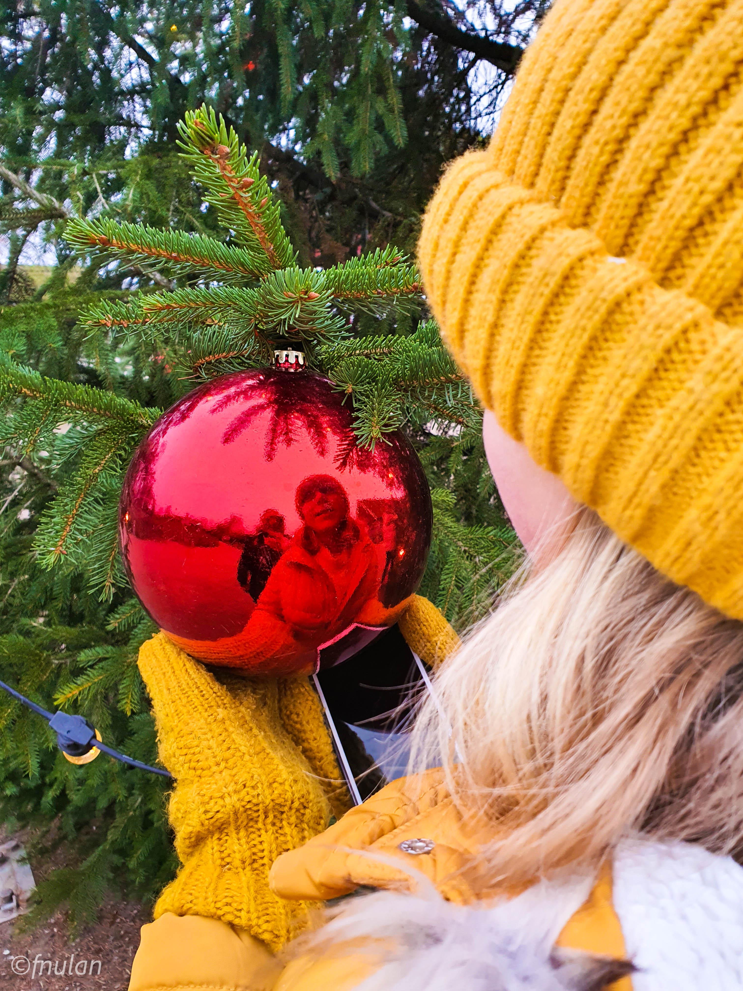 Jul i Skånes djurpark 2020-14