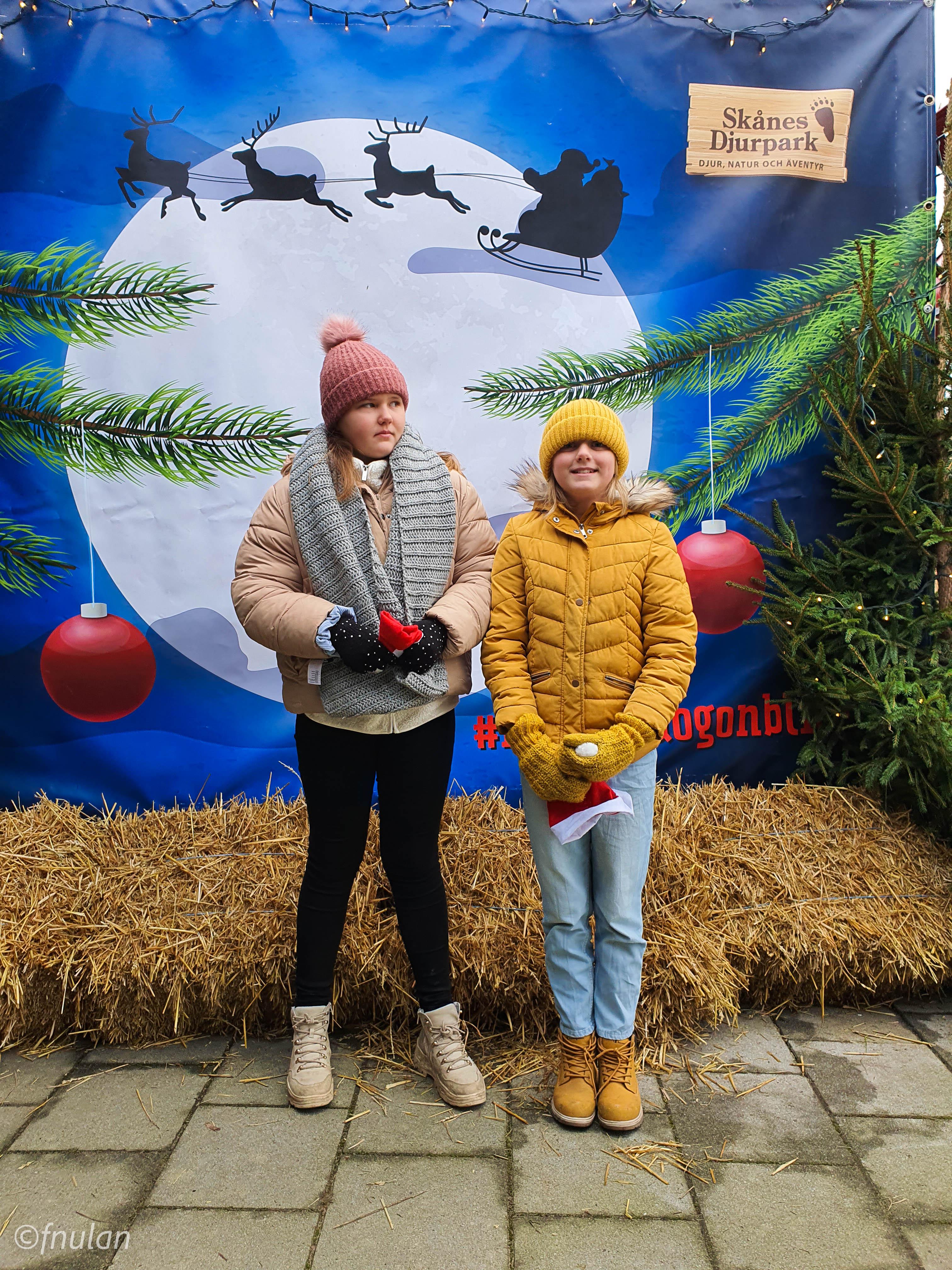 Jul i Skånes djurpark 2020-2