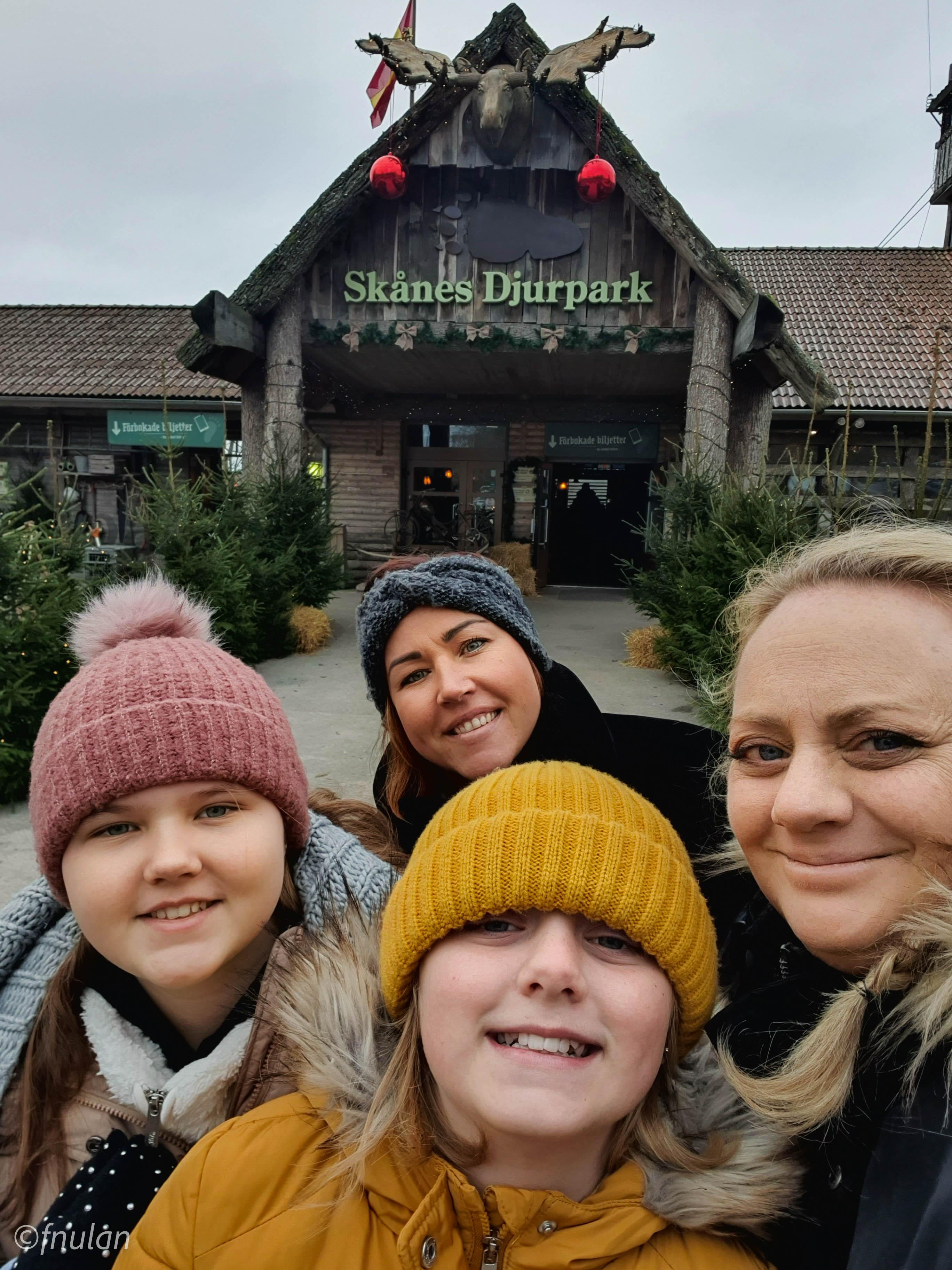 Jul i Skånes djurpark 2020