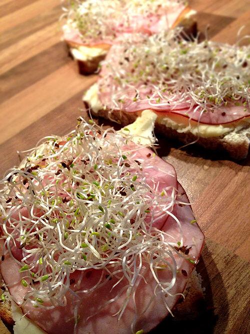 groddar_sandwich