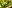 broccoli_lchf_broccoligratäng_nyttigt_matlådor_lunch_recept_tips_middagstips_kassler_purjolök_ostsås_gratäng_krämig_ost