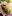 kycklingrulle_kyckling_kycklingwraps_tortilla_dressing_grilladkyckling_tips_recept