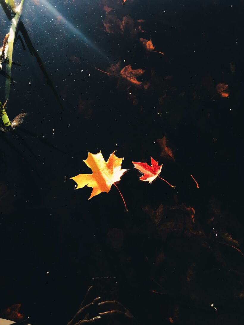 Processed with VSCO with e7 preset