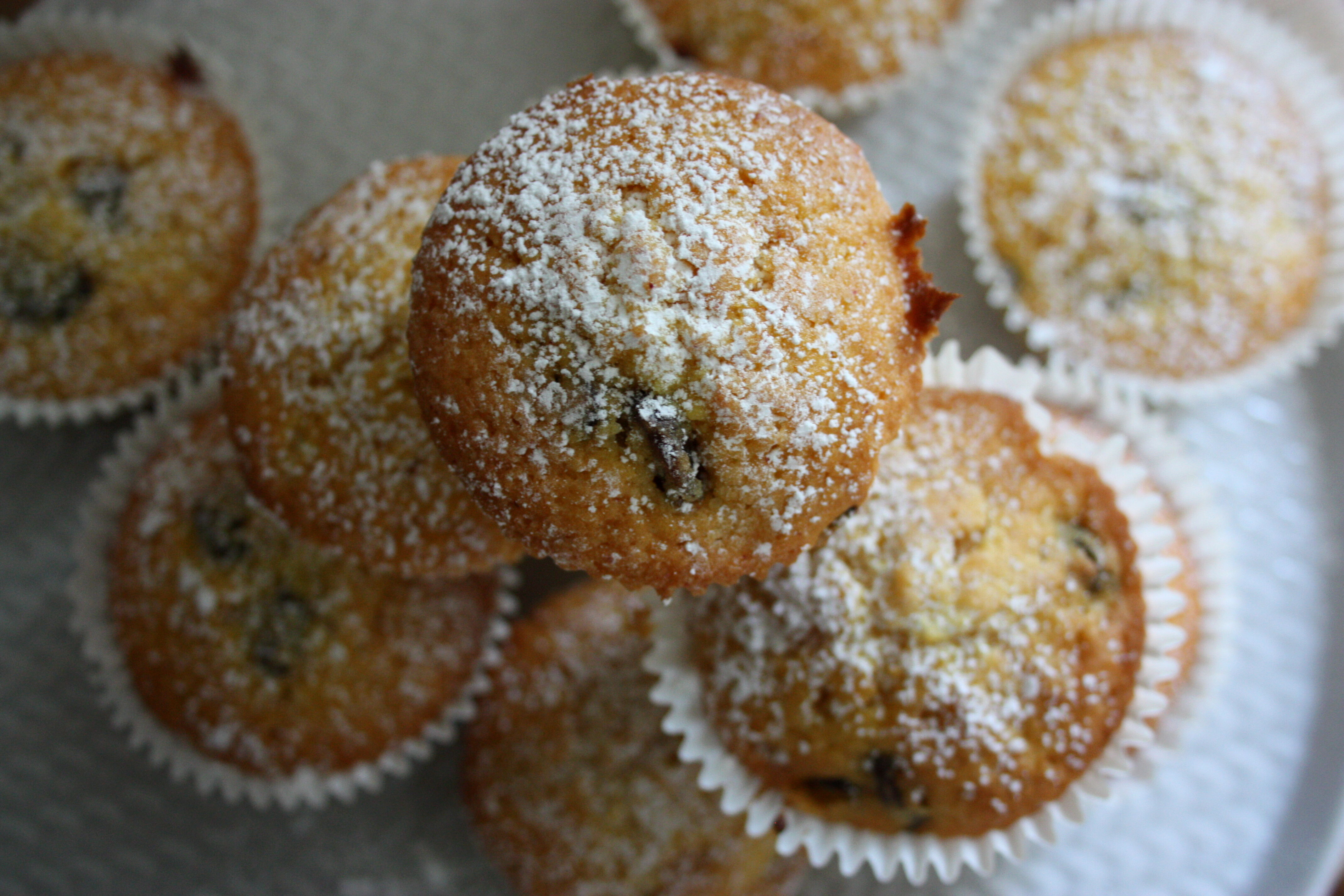 muffins russin