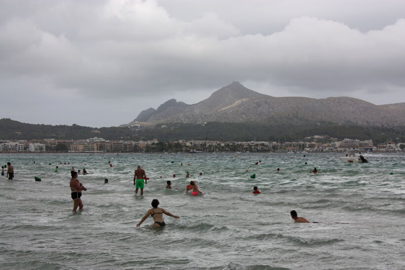 havet alcudia