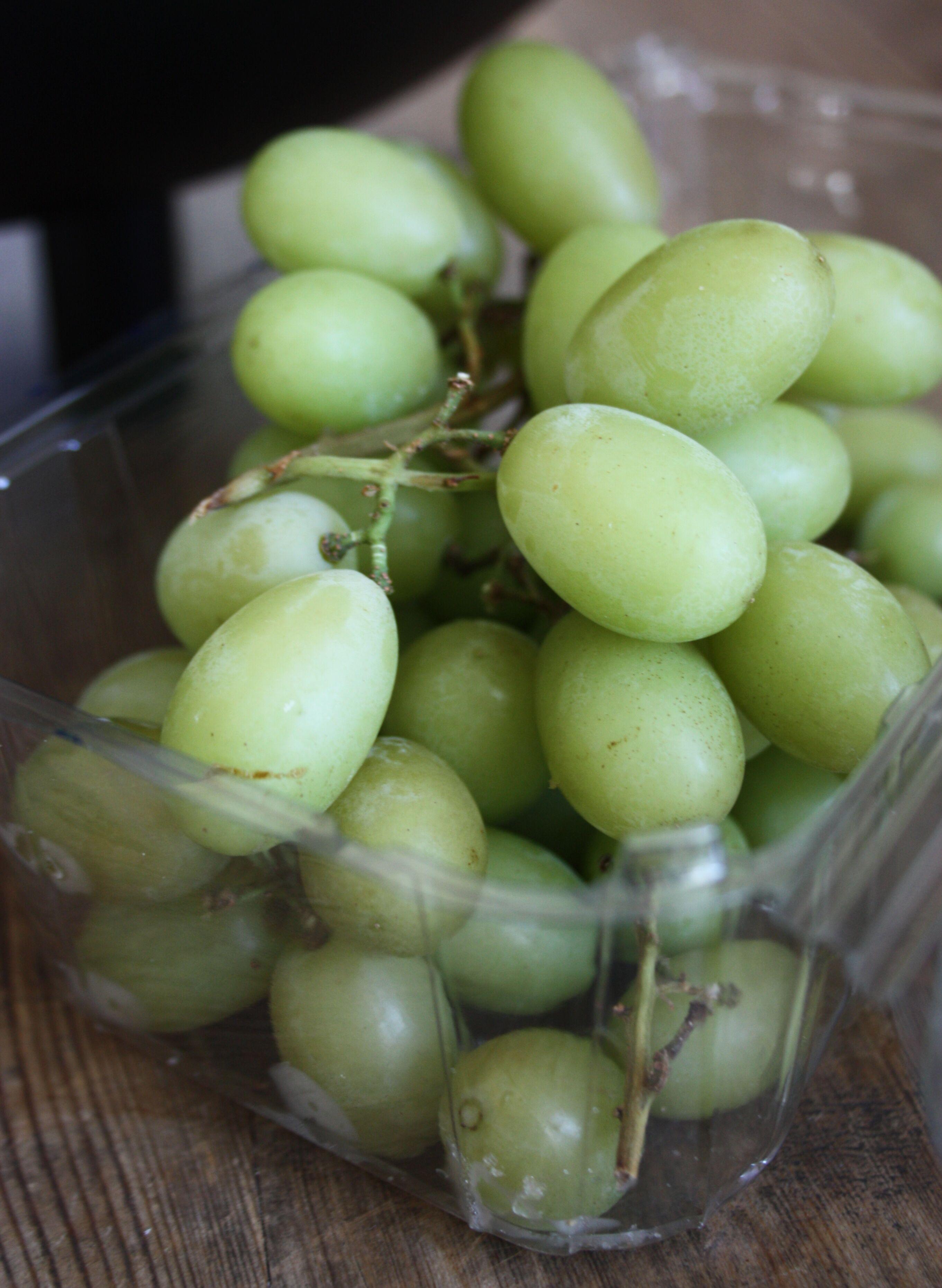 frysa vindruvor