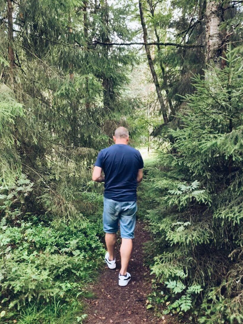 småland skog
