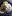 torsk citronsås