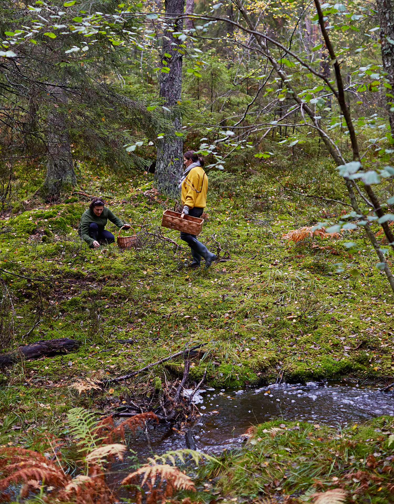 Lisa och Monica plockar svamp i skogen