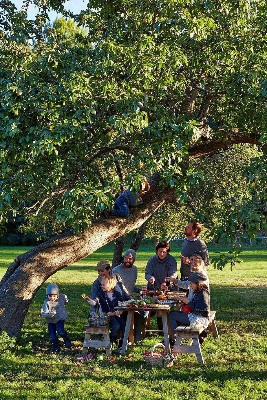 Familj och vänner som äter middag vid ett bord under ett äppleträd
